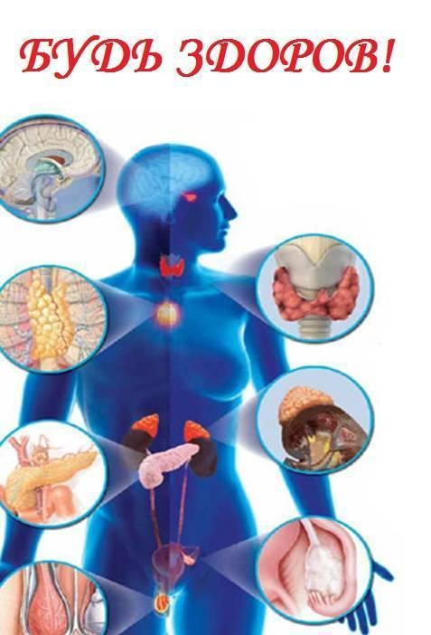 Эндокринология, заболевания эндокринной системы, симптомы, диагностика, лечение