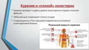 фолиевая кислота холестерин