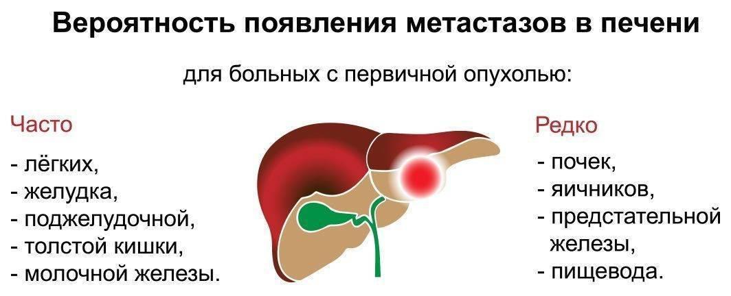 рак печени с метастазами сколько живут