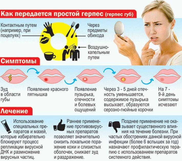 Диета и правильное питание при вирусе герпеса