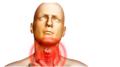 Лечение гонококкового фарингита различными способами