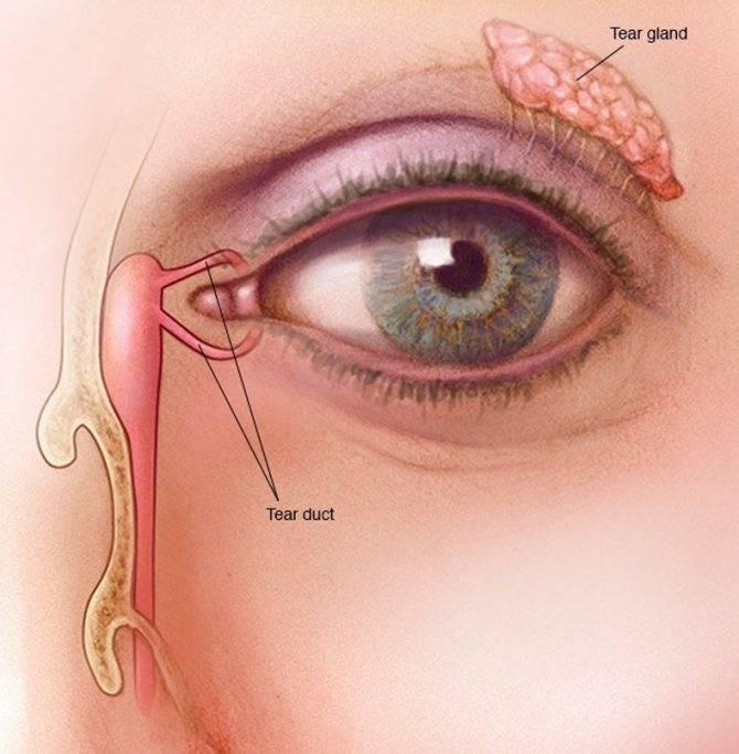 Двоение в глазах: причины, лечение. почему и при каком заболевании двоится в глазах — симптомы