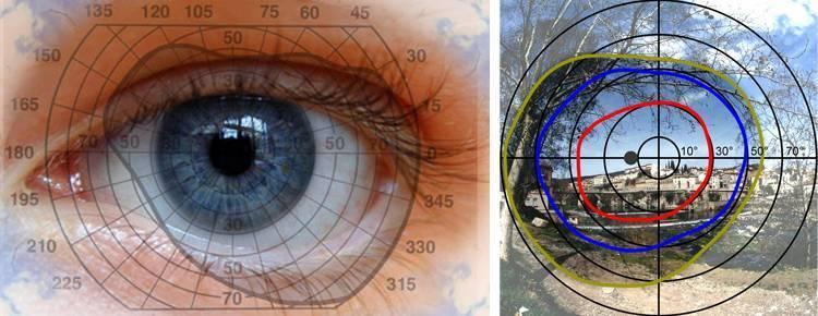 Причины и симптомы нарушений периферического (бокового) зрения