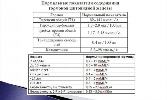 тироксин общий т4 понижен