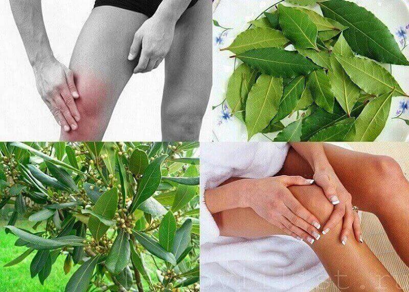 Народное средство от цистита у женщин лавровым листом