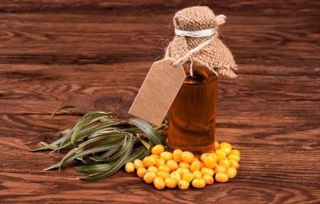 Облепиховое масло лечебные свойства от насморка
