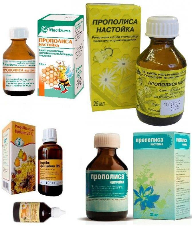Прополис на спирту в нос для лечения гайморита— применение и рецепты