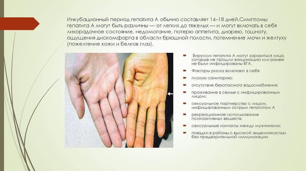 Сколько в среднем составляет инкубационный период гепатита с?