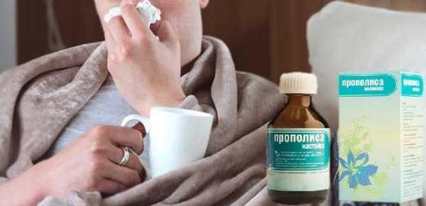 Прополис от гайморита: лучшие рецепты для борьбы с болезнью