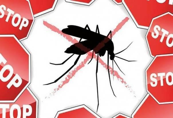 Эпидемиология малярии. жизненный цикл малярийных плазмодиев.