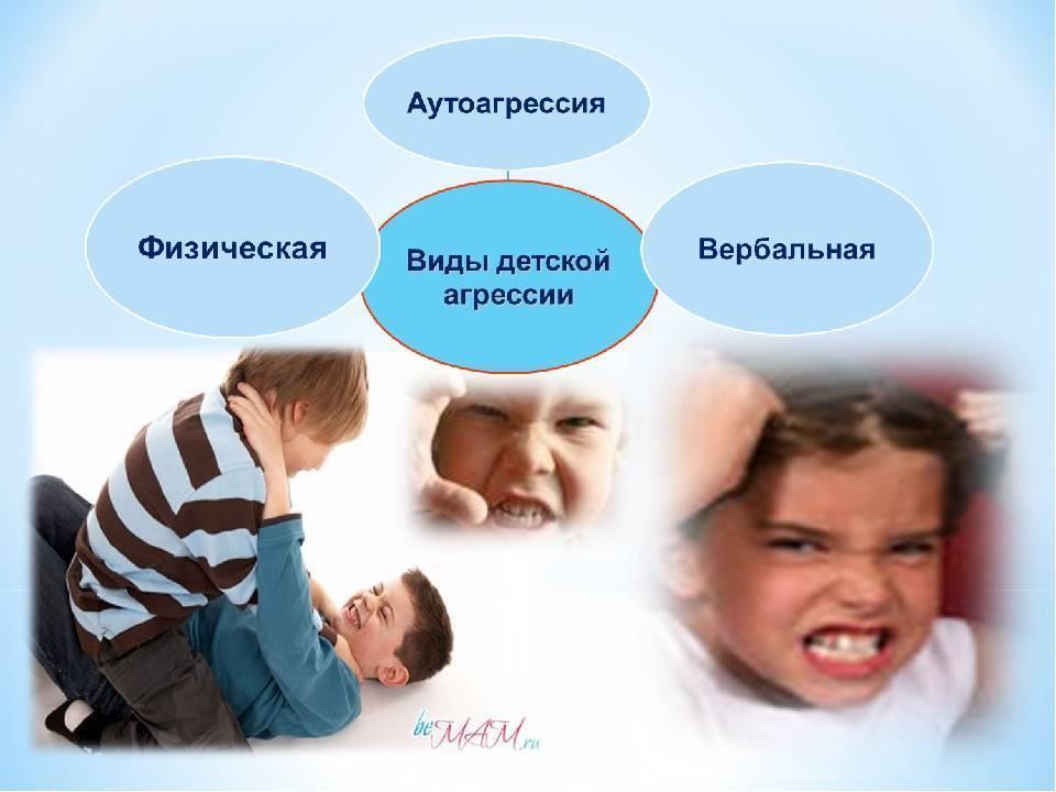 аутоагрессия в психологии это