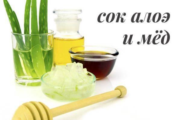 Рецепт алоэ с медом для лечения кашля