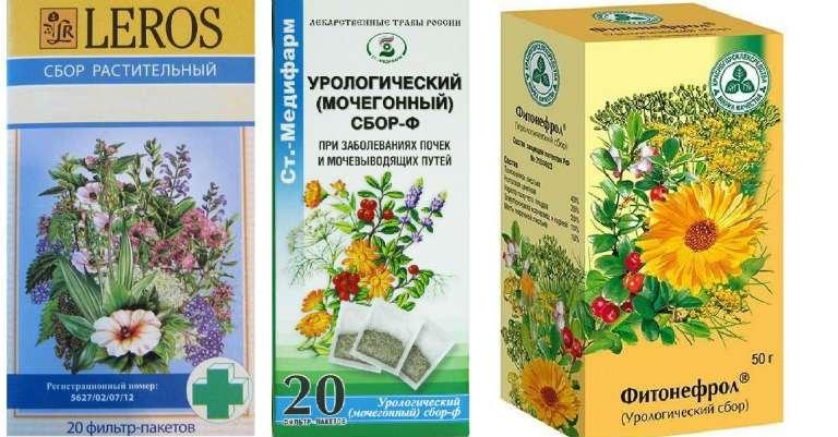 Фитотерапия против цистита: о лечении мочегонными травами и полезные рецепты