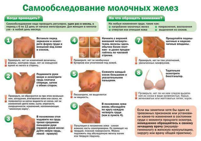Рак молочной железы 3 степени продолжительность жизни без лечения