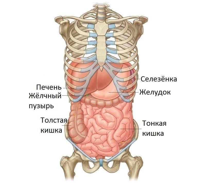 При кашле болит с правой стороны под ребрами