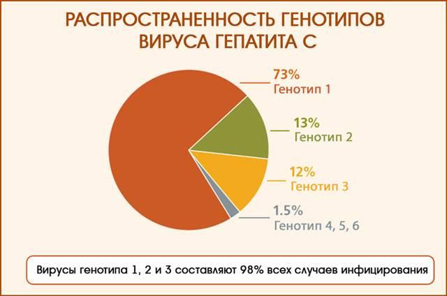 Генотип 3а вируса гепатита с: что это значит, симптомы, лечение, прогноз