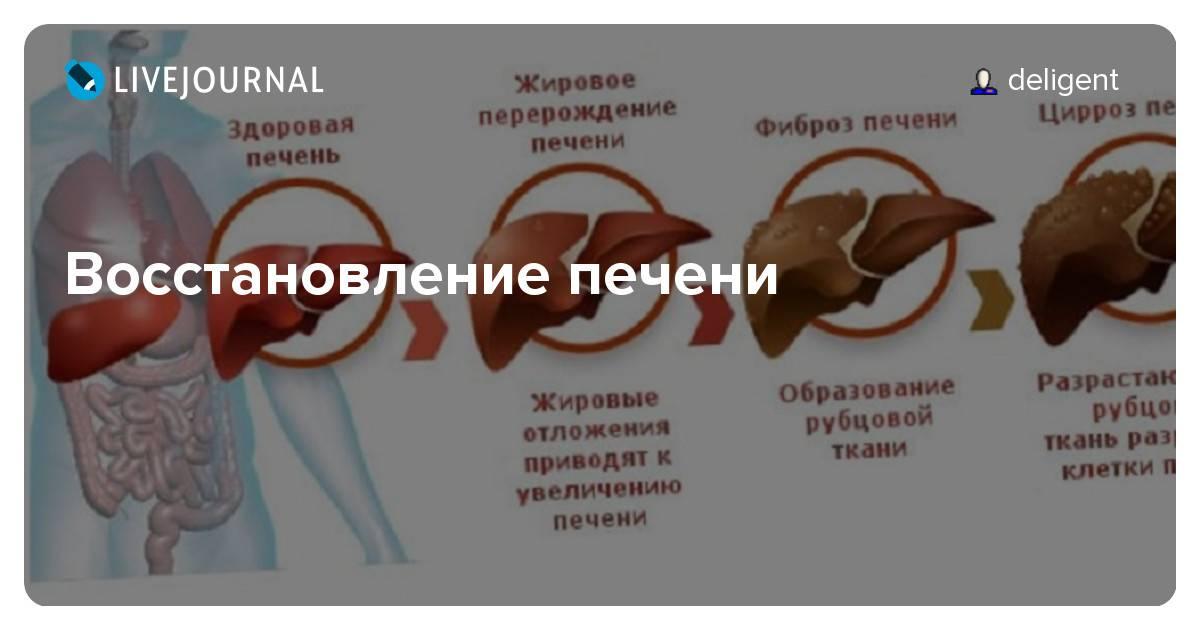 Что происходит с печенью при гепатите с и как ее восстановить после болезни