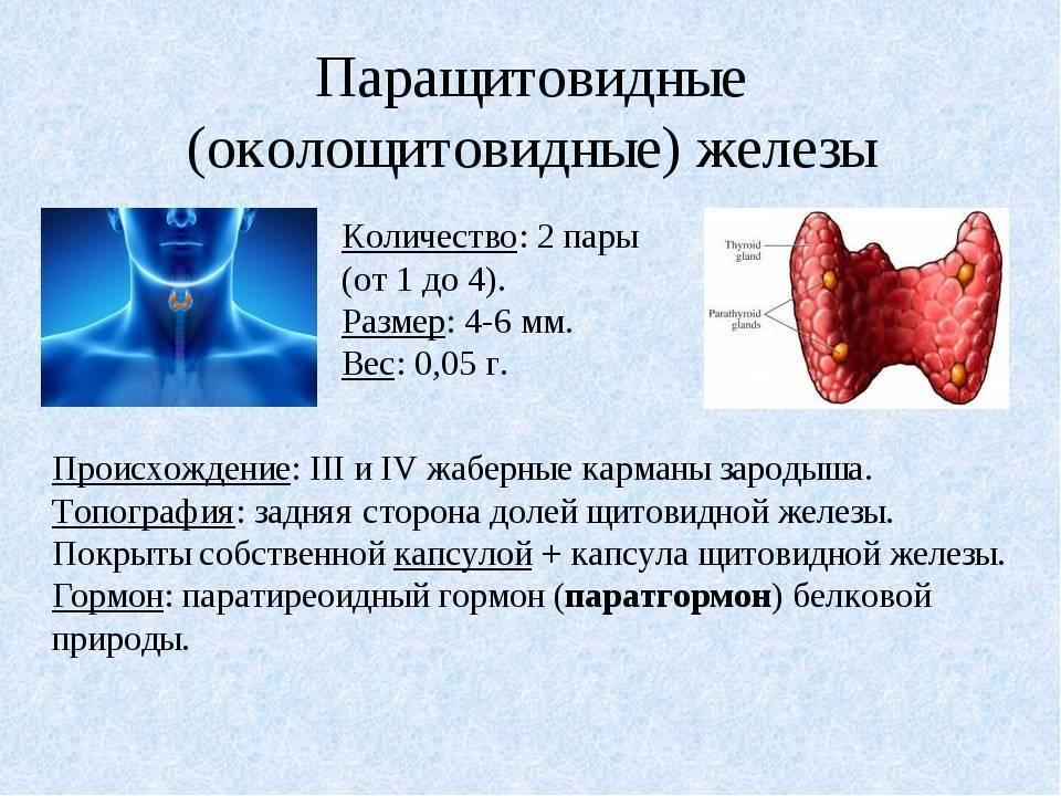 токсическая аденома щитовидной железы симптомы
