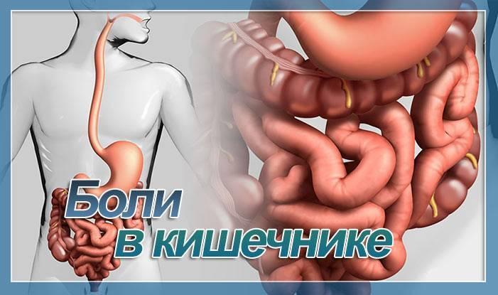 Может ли при геморрое болеть желудок