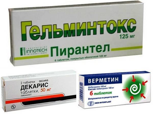 Чем важна профилактика паразитозов и какие лекарства уберегут от глистов взрослое население