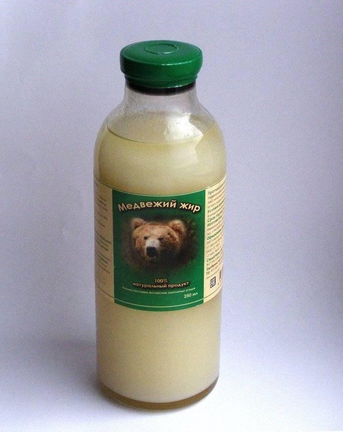 Как использовать медвежий жир при кашле взрослому
