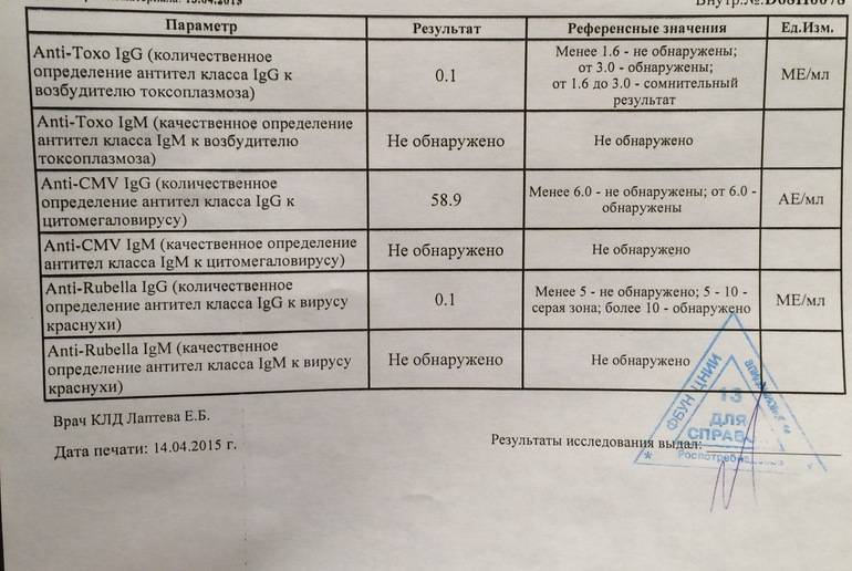 Анализ крови на токсоплазмоз расшифровка