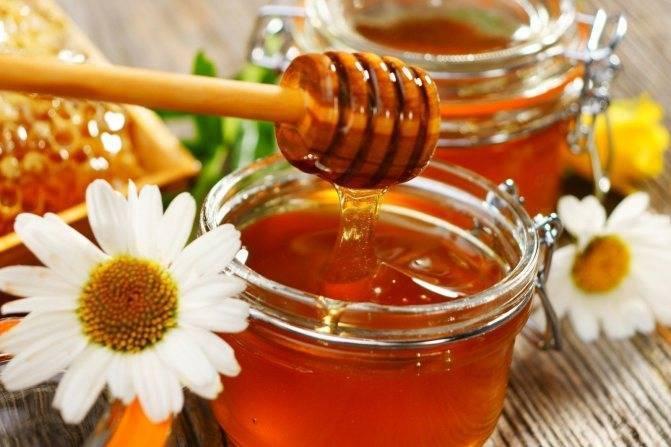Как мед влияет на печень и как лечить орган этим продуктом?