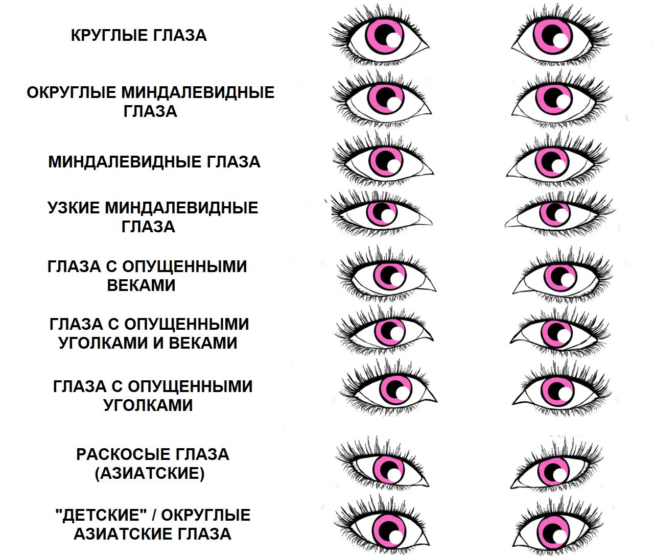 виды глаз