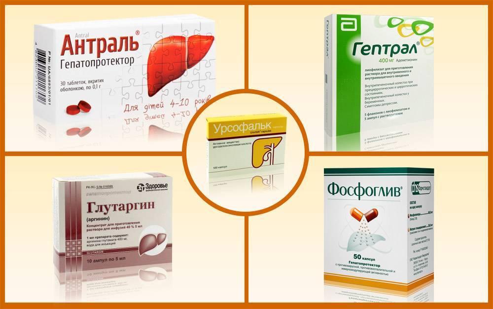 Печень увеличена на 2 см: причины, симптомы и лечение гепатомегалии