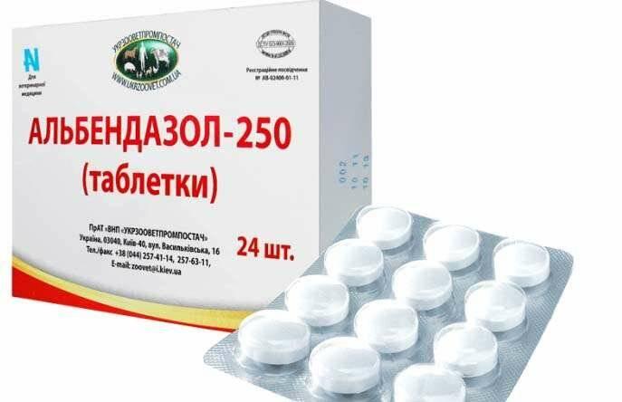 противопаразитарные препараты широкого спектра действия для человека