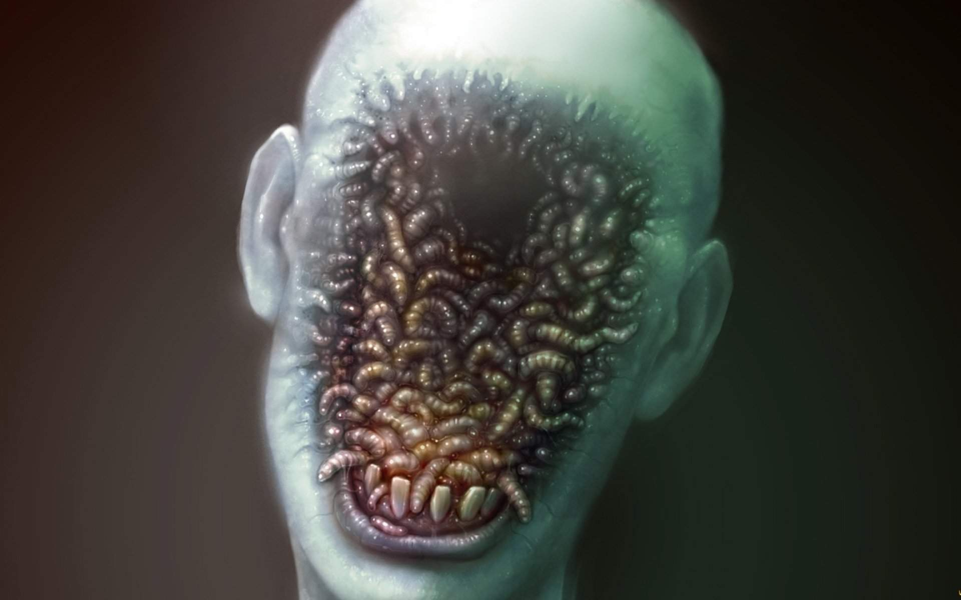 Черви в мозгу человека — parazit24