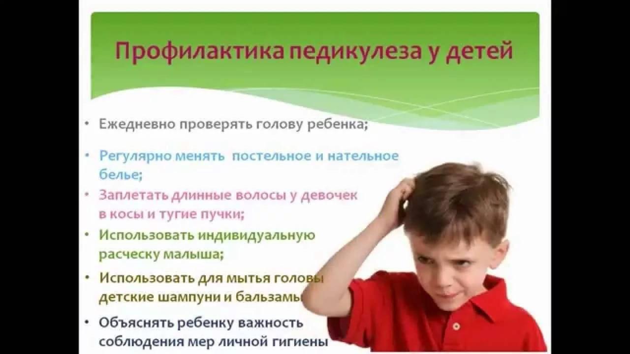 профилактика вшей и гнид в домашних условиях