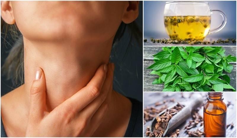 щитовидная железа лечение в домашних условиях