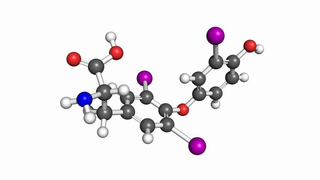 анализ кальцитонин что это такое
