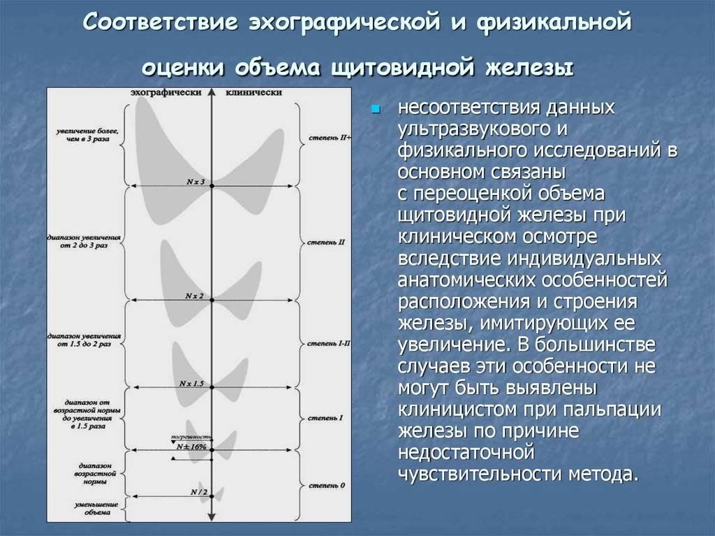 Щитовидка норма для женщин