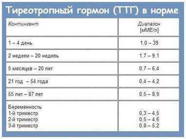 Анализ крови на гормоны щитовидной железы: расшифровка, норма