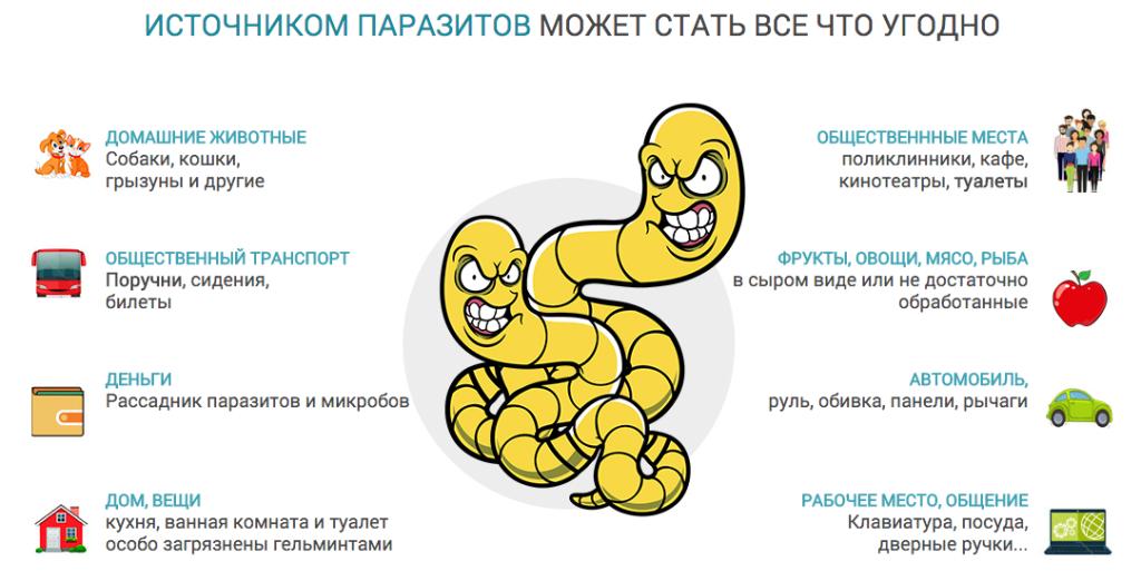 Что принять для профилактики от паразитов взрослому и ребенку: советы и рекомендации