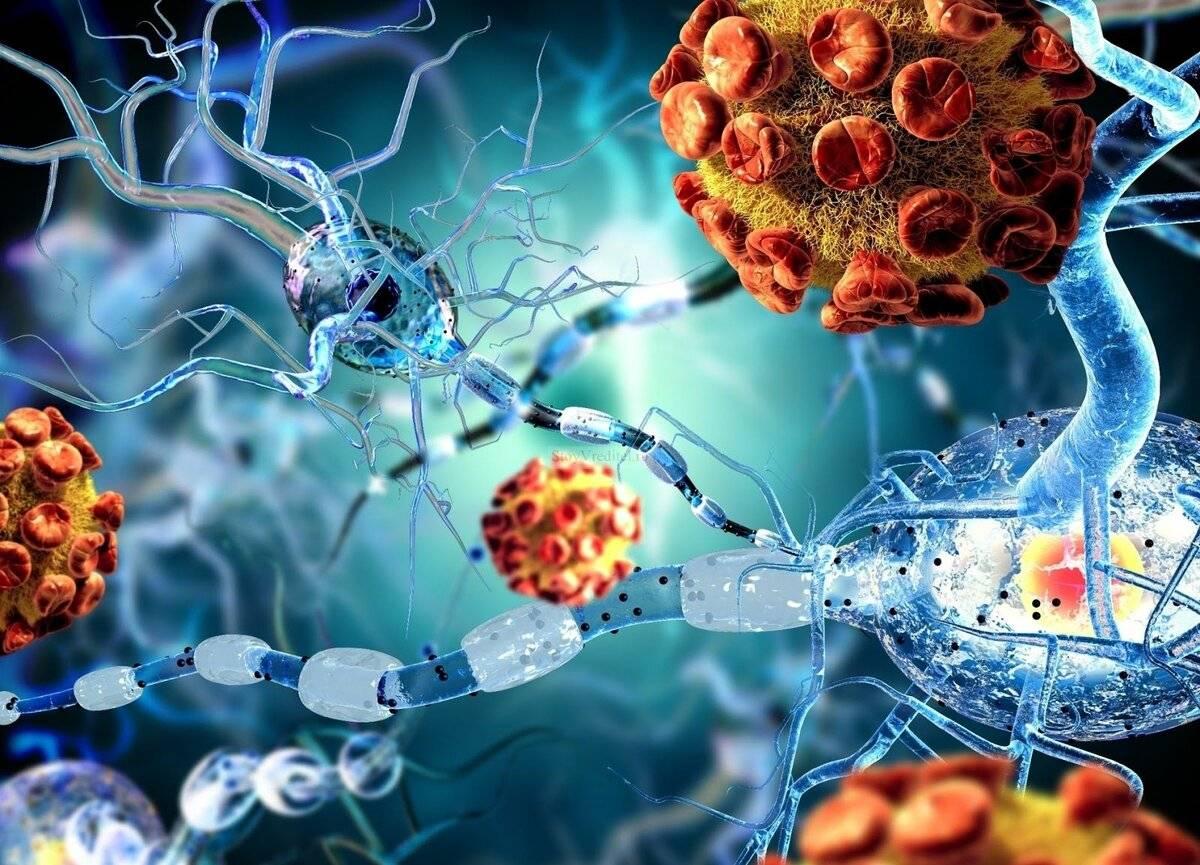 Препараты для повышения иммунитета. разговор начистоту