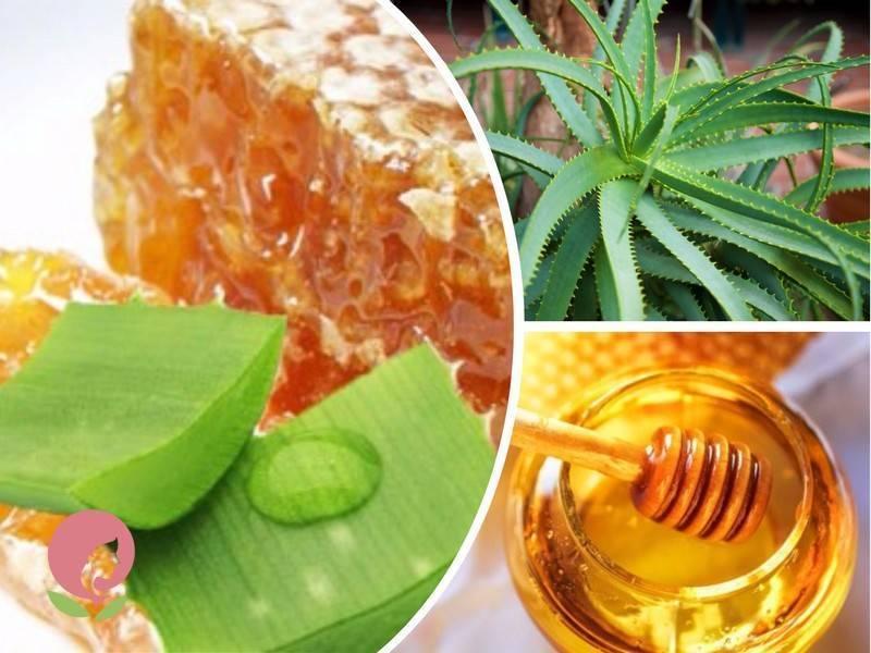 мед от насморка рецепт
