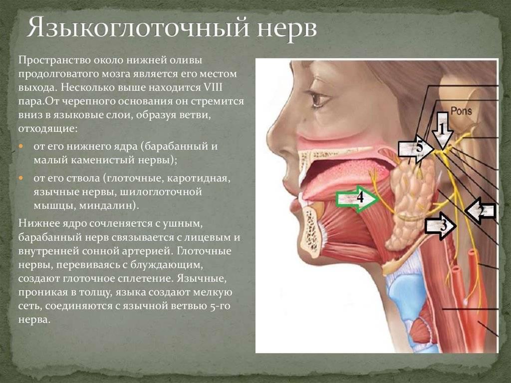 языкоглоточная невралгия