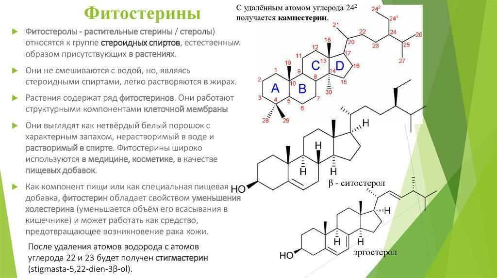 Фитостерины