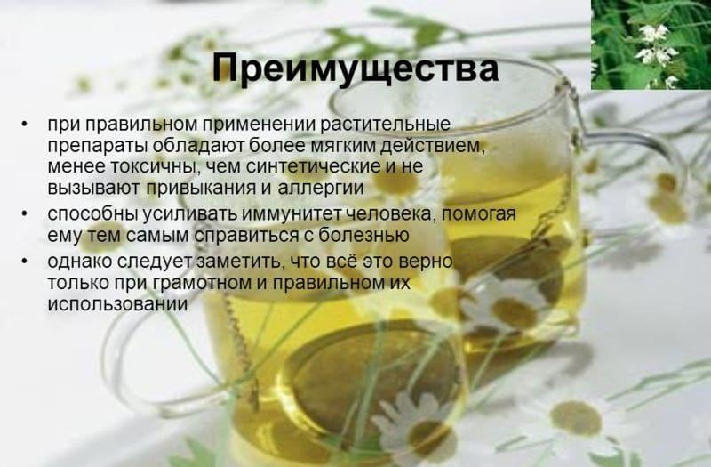 Чабрец от алкоголизма