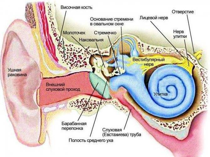 Втянутая барабанная перепонка болит ухо