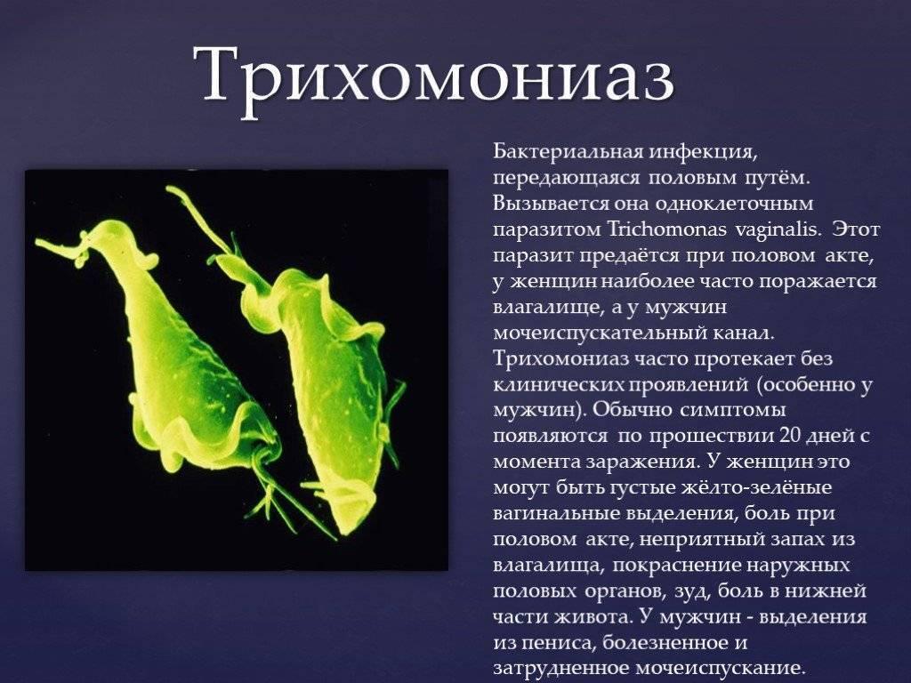Как передается трихомониаз: половой и бытовой пути заражения, инкубационный период инфекции