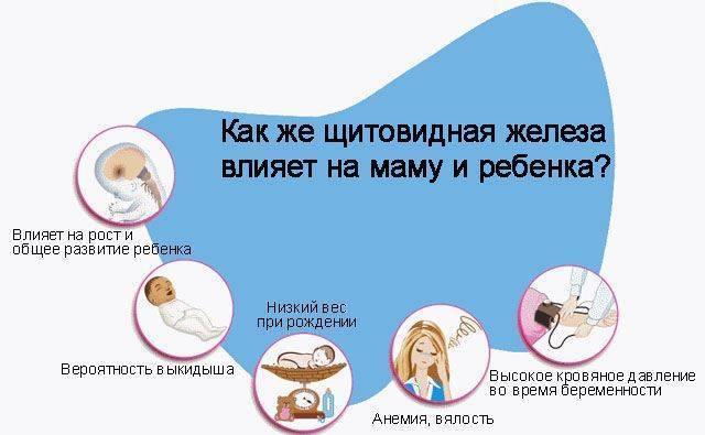 щитовидная железа при планировании беременности