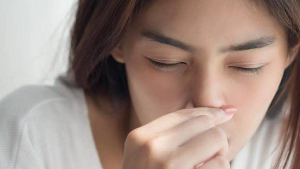 почему нос холодный у человека