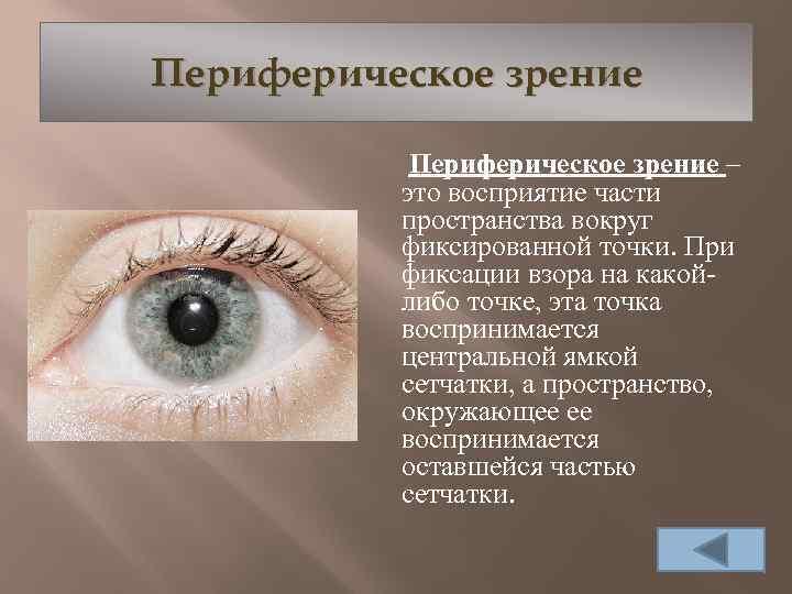 Нарушения бокового зрения. изменения поля зрения. скотома – очаговое нарушение поля зрения