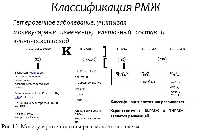 Особенности люминального типа а рака молочной железы
