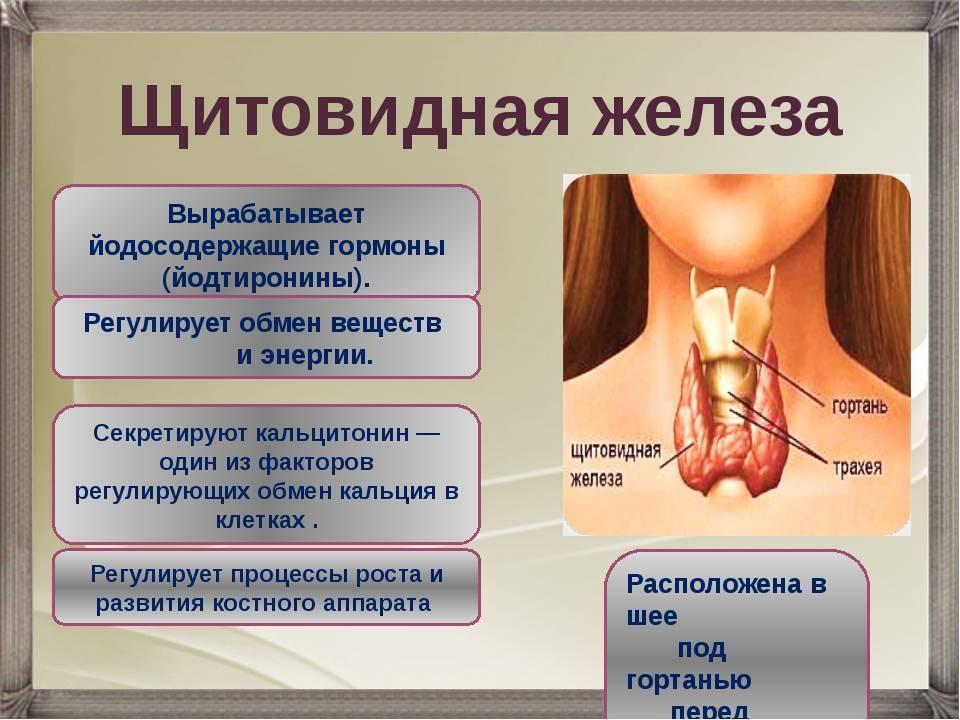 Причины переизбытка гормонов щитовидной железы