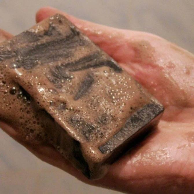 Помогает ли дегтярное мыло от вшей?